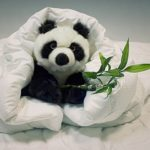 bambuu-blanket-and-panda